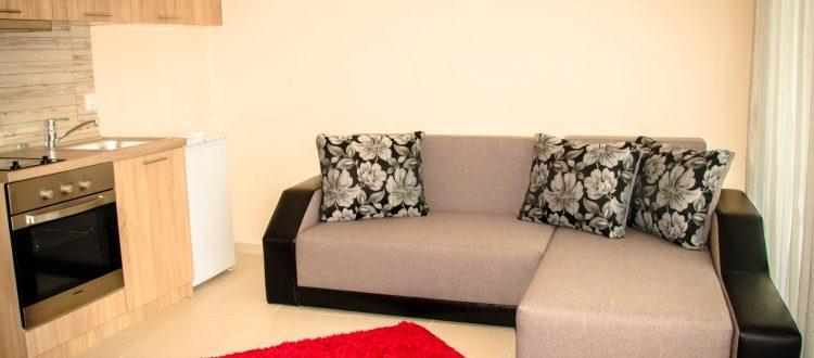 Rose Parter Nani Apartment -01